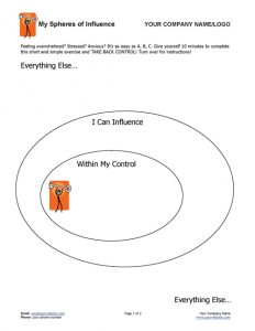 Spheres of Influence Coaching Exercise