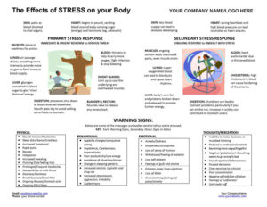 Effects of Stress and Warning Signs Poster
