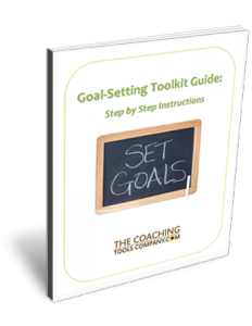 Vision and Goal-Setting Toolkit 3D User Guide Page