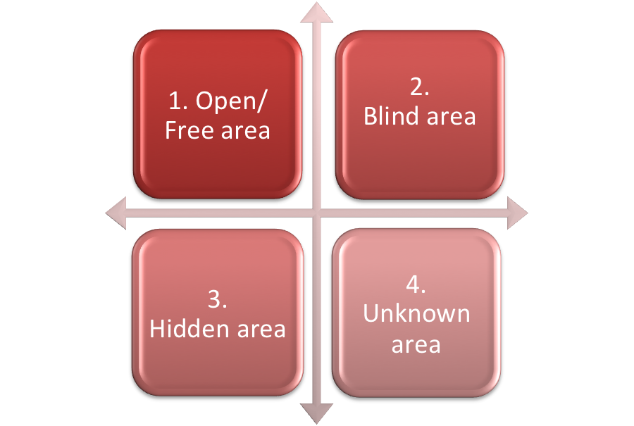 Ruby Johari Window