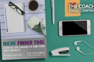 Niche Finder Tool on Desk